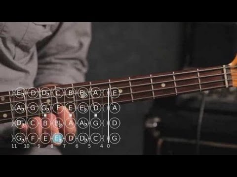 How to Play D ♯ / E Flat Minor Scale | Bass Guitar