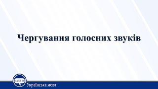 Урок 21. Українська мова 10 клас