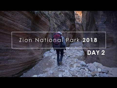 Zion Fall 2018: (Day 2) Large Format Photography in Zion