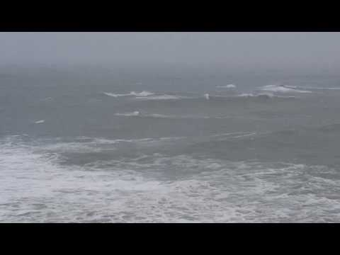 Ocean rescue on the Sonoma Coast