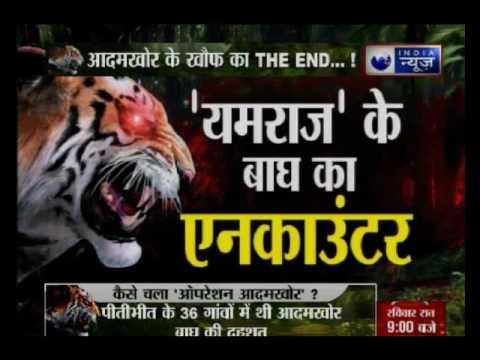 Forest department operation ends terror of tiger in Pilibhit, Uttar Pradesh