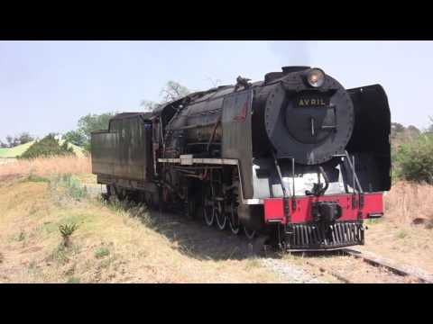Steam train trip to Cullinan