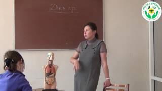 Питание и зрение. Видео лекция Гуреевой О.Е. (УОЦ Ольги Гуреевой, Ижевск)