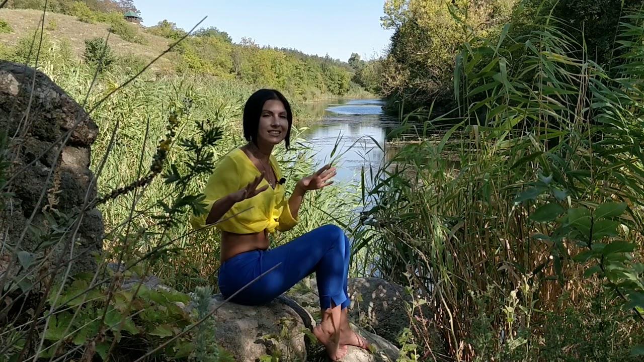 Дибровский лес (лес Нестора Махно). Удивительные места Украины