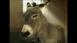 Super Bowl 2017 Top 5 Budweiser commercials Ads Latest Compilation