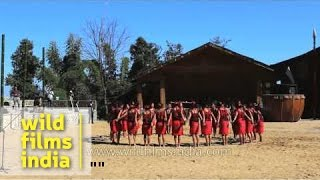 Folk song (song of blessing) presented by Phom tribe, Nagaland