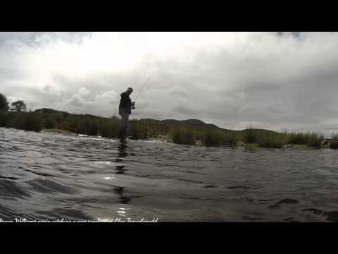 Trout Fishing Llyn Trawsfynydd With Arwyn Williams