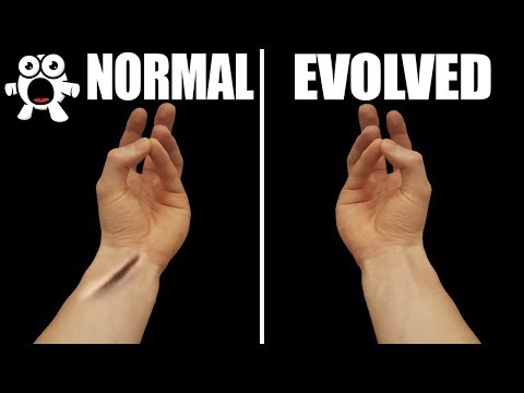 Top 10 Parts of Your Body That Prove You've Evolved