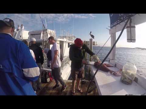Sweet Jody Fishing - Destin Florida - Party Charter Boat