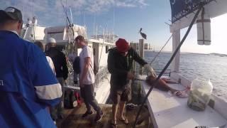 Destin charter boat for Sweet jody fishing