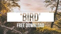 Dreamy Wavy Chill Boom Bap Hip Hop Instrumental 'Bird'   Chuki Beats
