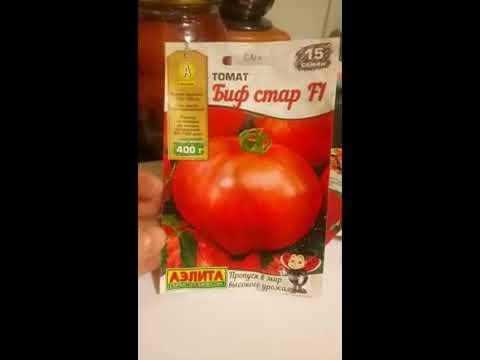 Обзор Сортов томатов для Урала 2019!!!