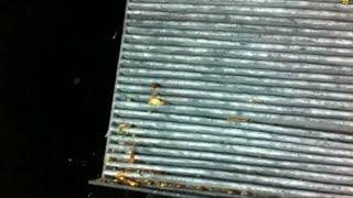 skoda octavia 2 vw golf 5 innenraumfilter pollenfilter wechseln cabin air filter change