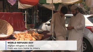 Afghan refugees in India: From war-torn home to misery
