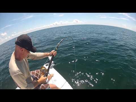 Fun With Goliath Grouper | Boca Grande Fishing Charters