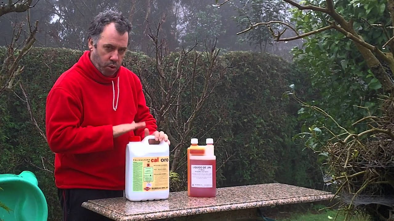 Polisulfuro de calcio tratamiento de invierno para arboles for Arbustos para jardin