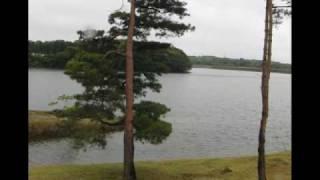 小雨の山倉ダム