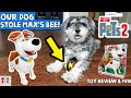 Our Dog Stole Max's Busy Bee! | The Secret Life of Pets 2 Movin and Chat Max Review and Fun!