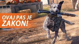 ZAPALIO SAM POLA ŠUME I SPASIO PSA - Far Cry 5