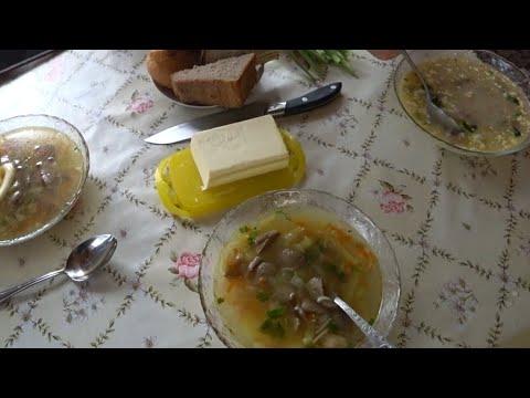 ВЛОГ Грибной суп из маслят /Длинный , интересный день закончился :((( 16 июля 2018 г.