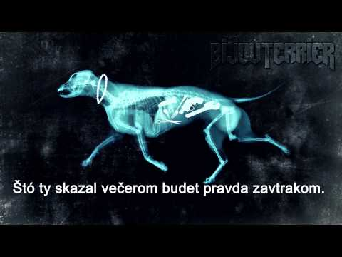 BijouTerrier feat. Eidams Family - JÓ NAPOT KIVÁNOK (prod. Marcel Buntaj)