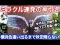横浜GOフェスペラップ○○匹&横浜色違い出るまで秋田帰りません!【ポケモンGO】