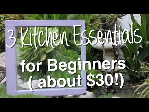 3 Kitchen Essentials under $30 // Health Transforming