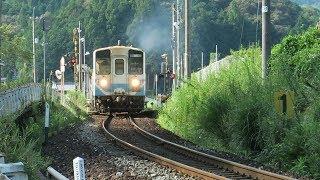 JR四国 土讃線 襟野々を行く気動車 N2000系 & キハ32 2019 09