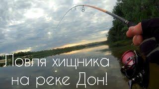 Ловля хищника на реке Дон в конце мая Крутая рыбалка на спиннинг с берега