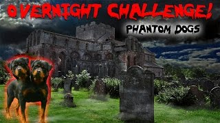 THE 3 AM CHALLENGE AT HAUNTED CEMETERY | OVERNIGHT CHALLENGE CREEPY DOG HOUSE & PHANTOM DOGS
