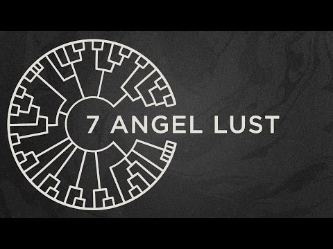 Area 11 - Angel Lust [Official Lyric Video]