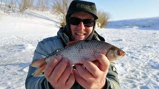 ПЛОТВА ПРОКЛЮНУЛАСЬ ВЕЧЕРОМ Рыбалка на мормышку в апреле на малой реке плотва на безмотылку