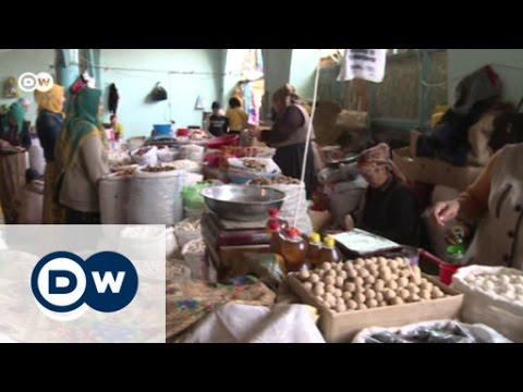 Save Kyrgyzstan's walnut paradise | Global 3000