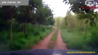 Езда на Great Wall Haval H5 (Грейт Вол Хавал Н5) через лес