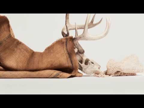 Antelope - Juan Loco