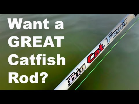 Are You Looking For A GREAT CATFISH ROD?