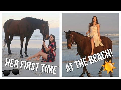 Riding My Horse  On The Beach For The First Time!