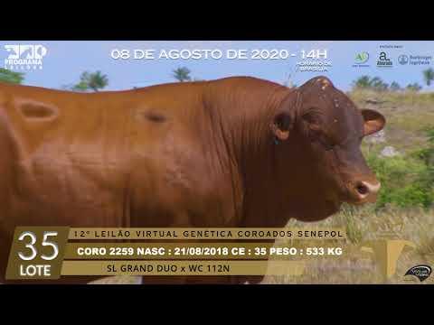 LOTE 35 CORO 2259