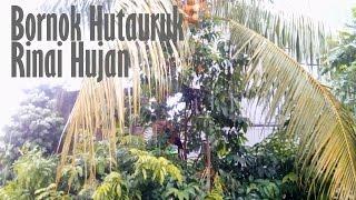 Bornok Hutauruk - Rinai Hujan