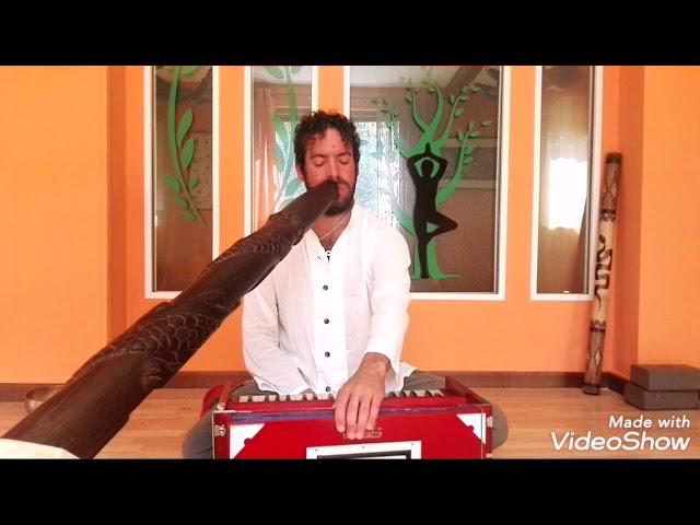 Harmonium Indiano e Didgeridoo