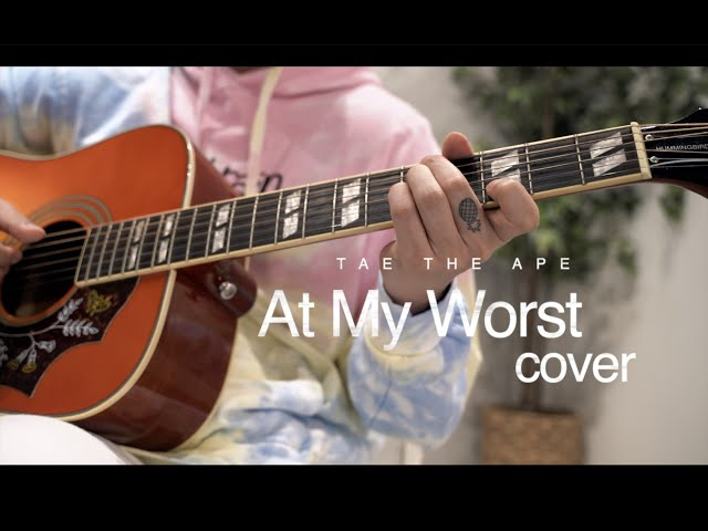 Pink Sweats - At My Worst (Cover by Tae the Ape)