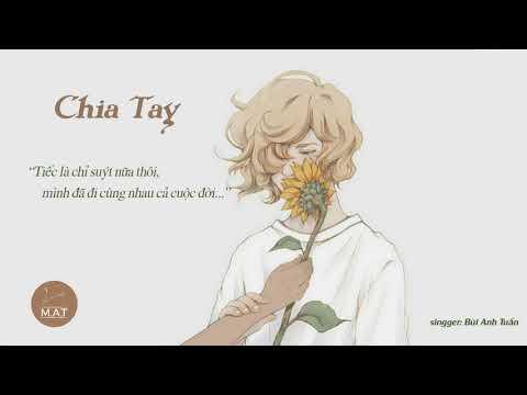 CHIA TAY | BÙI ANH TUẤN (Offical Audio)