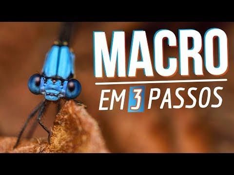 FOTOGRAFIA MACRO COM