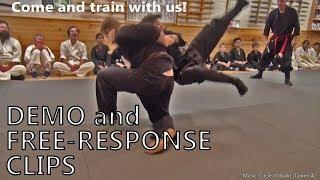 Dojo Demos and Free Response Martial Arts Clips