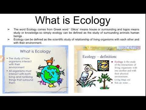 What is ecology and ecosystem, classification of ecosystem