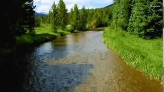 Оркестр Поля Мориа --« Мой дом и река»- Paul Mauriat Orchestra