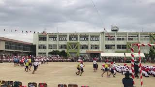 小学运动会。