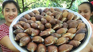 Yummy Sea Snails Curry Recipe / Ocean Snail Cooking / Prepare By Countryside Life TV