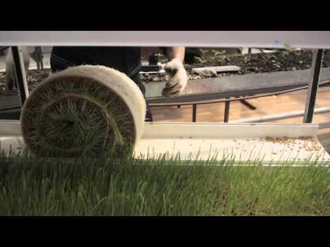видео: Антикризисное решение для крестьянских хозяйств!