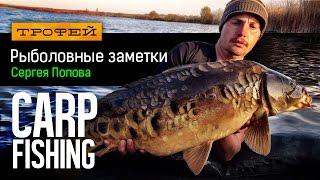 Рыболовные заметки Сергея Попова - Carp Fishing
